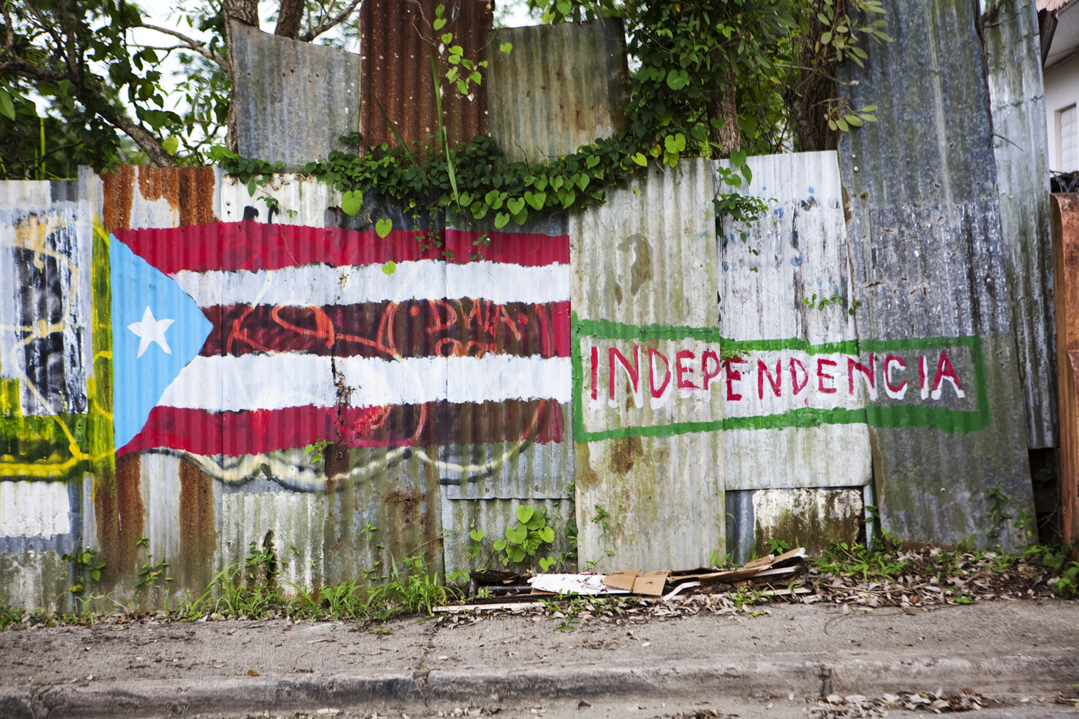 Does Puerto Rico <i>Really</i> Want to be the 51st State?